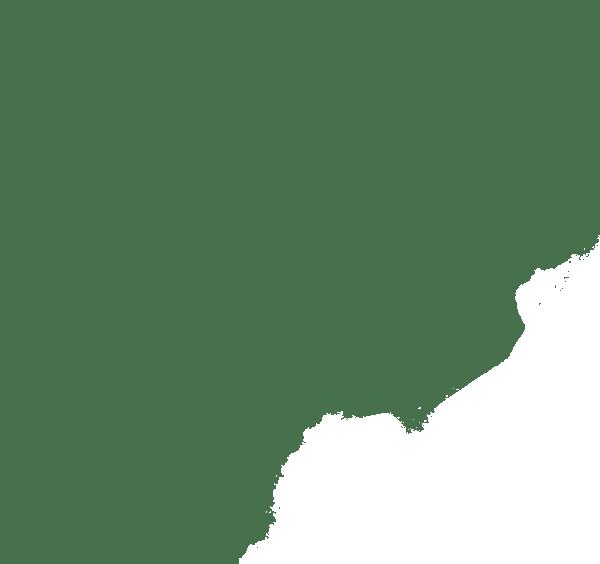 Identité graphique à Montauban